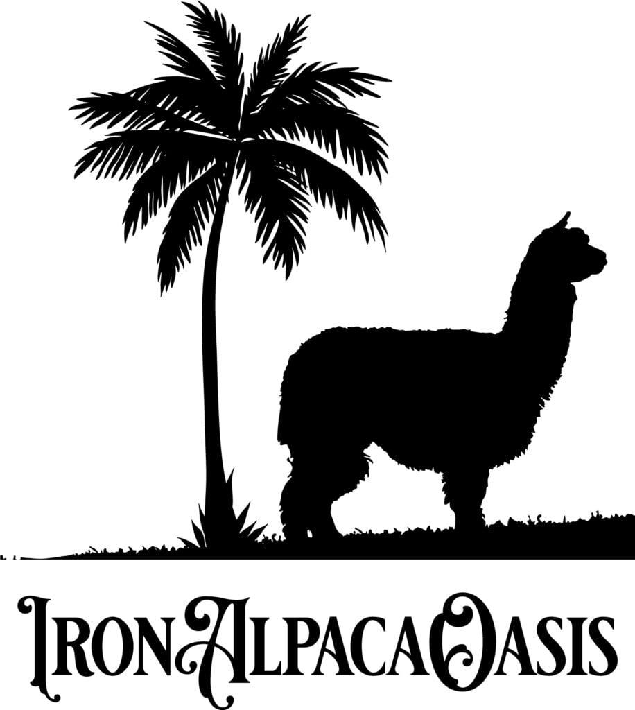 Spokane Web Design and Logo Design
