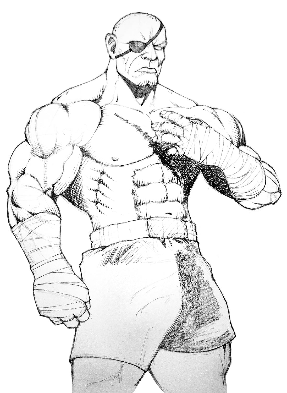 Streetfighter Drawing